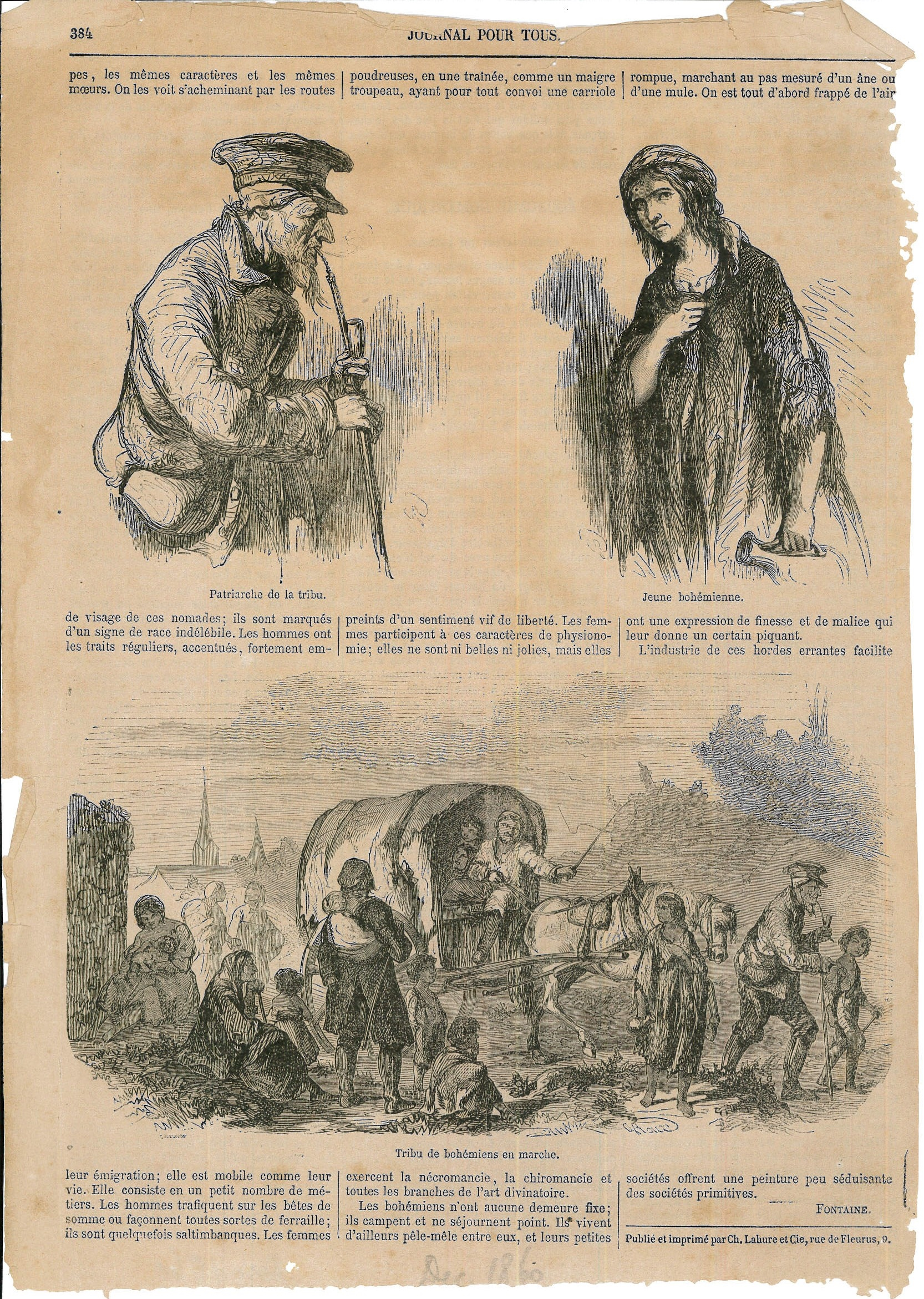 1860_12_p.384.jpg - image/jpeg