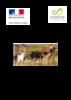 48_SchemaGDV_Lozere_-_Version_2_novembre_2010bisbis.pdf - application/pdf